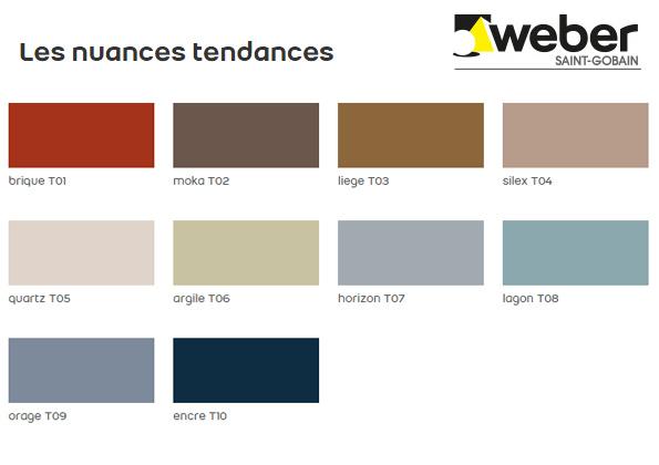 Source a id weber met de la couleur dans ses joints for Choisir couleur joint carrelage