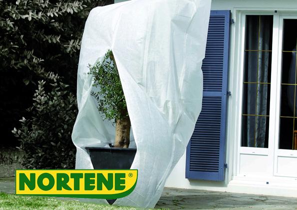 source a id un voile d 39 hivernage pour prot ger vos plantes. Black Bedroom Furniture Sets. Home Design Ideas